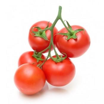 Tomate - France