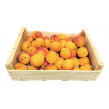 Abricot a confiture colis...
