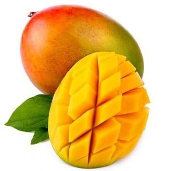 Mangue kent - Sénégal