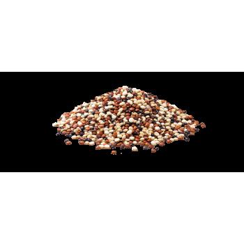 Trio de quinoa réal vrac