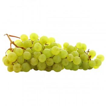 Raisin blanc Danlas - France