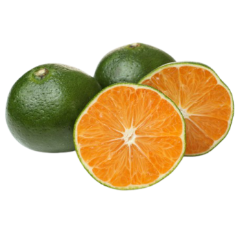 Mandarine Verte - Italie