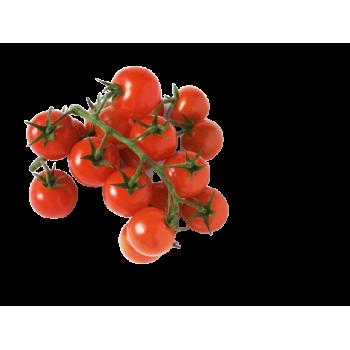 Tomate cerise - France